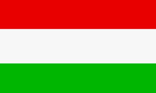 Ungarisch lernen in Mainz
